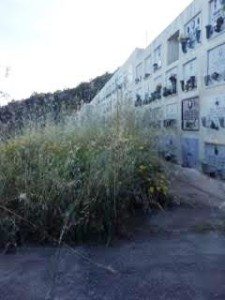 cimitero alicudi