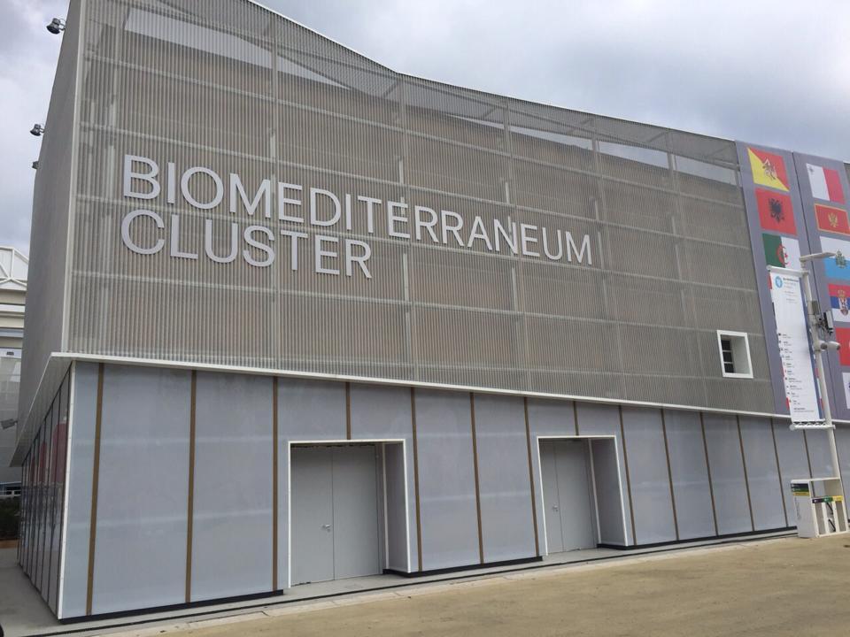 cluster biom