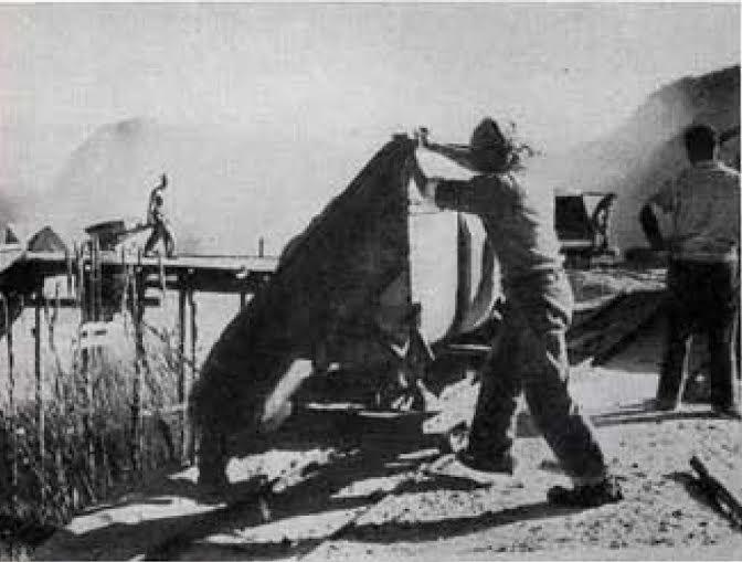 lavoratori della pomice