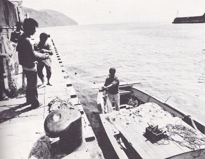 eoliana pesca 4