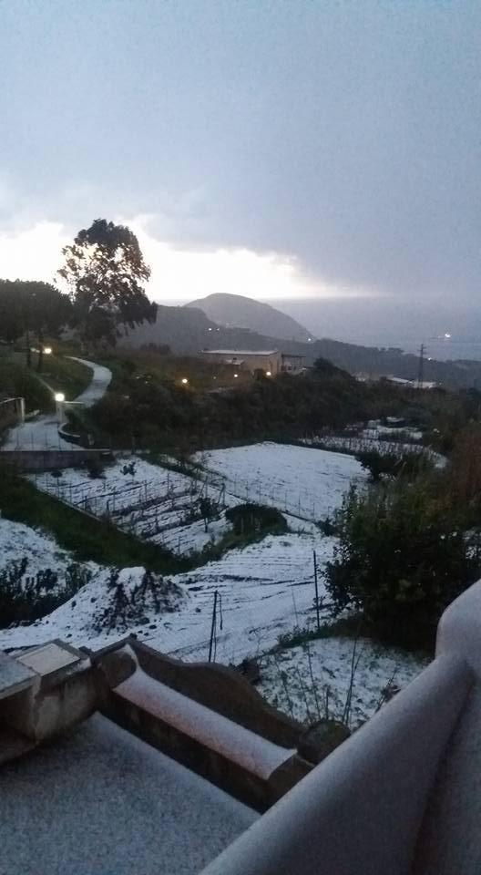 fonti neve 1