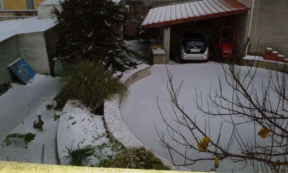 neve cipicchia