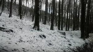 neve riserva