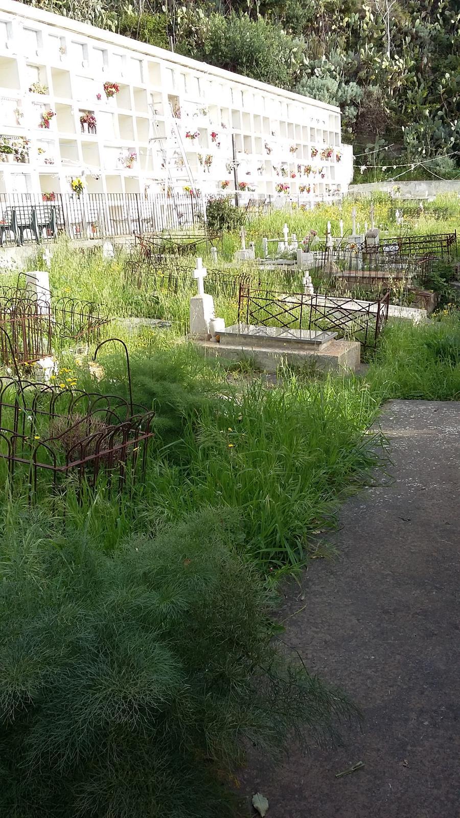 giacom cimitero 3