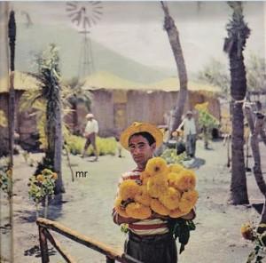 """Visione del """"Villaggio dei Pagliai"""", il centro turistico più elegante di Vulcano. Le capanne, """"indigene"""" all'apparenza, sono provviste di acqua corrente e di ogni comfort."""