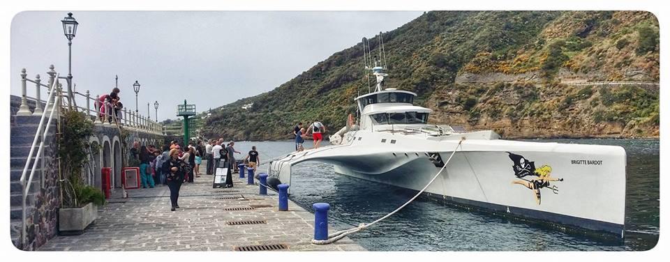 sea sheperd 1