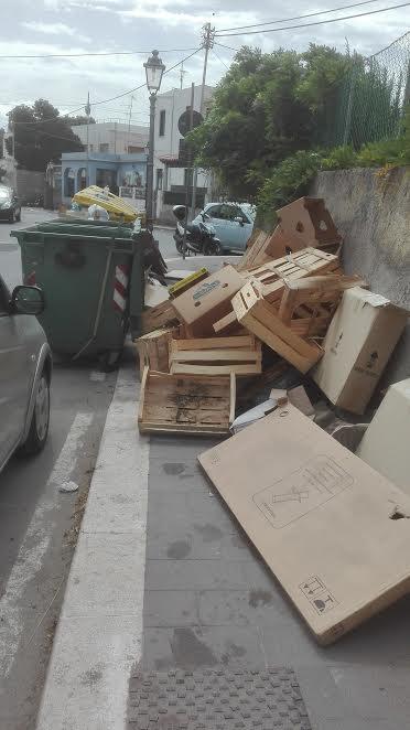 legno cassonetti rifiuti differenziata
