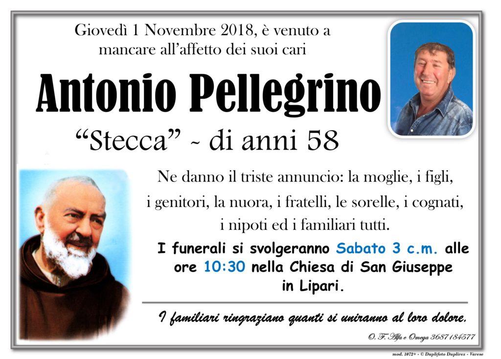 32 - B (Pellegrino Antonio - Stecca)