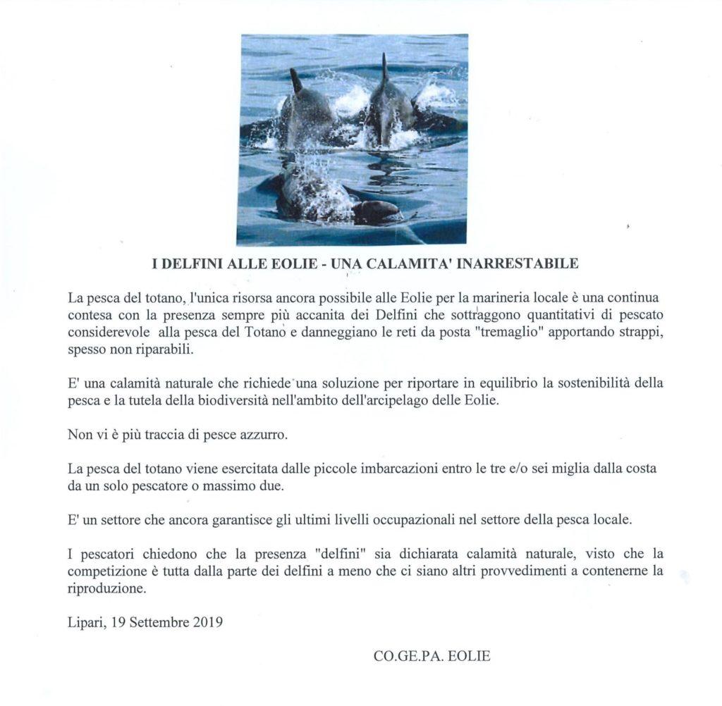 delfini cogepa